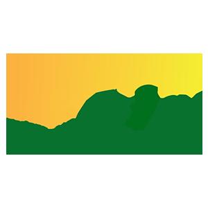 https://fepelota.com/wp-content/uploads/2020/06/Logo-FFPCV-Color-1.png